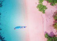 Pantai Berpasir Pink Pulau Komodo, Image By : @tix_travel