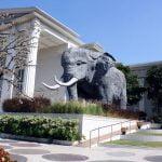 Tambah Ilmu Pengetahuan daru di Batu Secret Zoo dan Museum Satwa