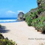 Pantai Ngrawah Pantai Yang Tersembunyi