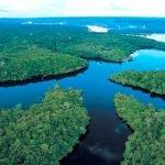Sungai Yang Dipenuhi fauna Air Tawar Terbanyak di Dunia (Sungai Amazon)