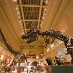 The Smithsonian Museums di Washington, Amerika Serikat