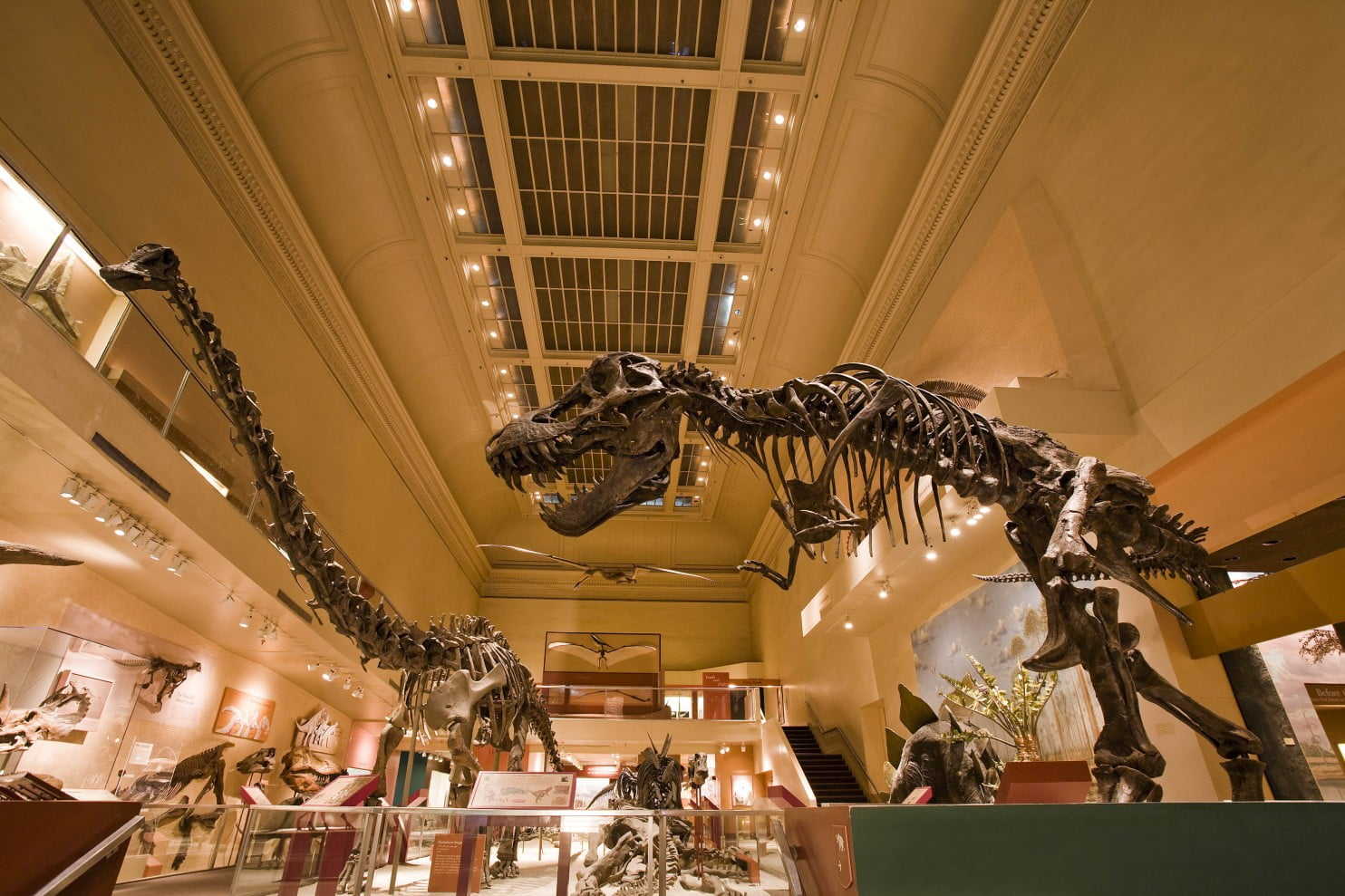 The Smithsonian Museums di Washington, Amerika Serikat