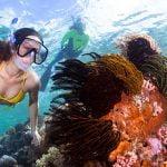 Lebih Dekat Dengan Wakatobi Salah Satu Surga Bawah Laut Paling Indah Di Dunia