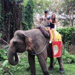 Naik Gajah di Bali Safari
