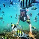 4 Pilihan Pantai di Yogyakarta yang bisa snorkeling