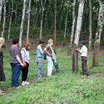 Belajar Tentang Perkebunan di Agrowisata Kaliklatak