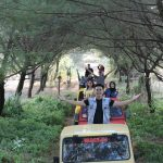 Naik Jeep di Hutan Cemara Pantai Samas