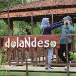 Dolan Deso Boro
