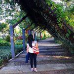 Taman Pelangi Surabaya, Image By IG : @itameipanda