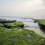 Pantai Taman Manalusu, image by : adrasablog.com