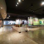 Museum Nasional Sejarah Alam Indonesia, Image By IG : @wanarastudio