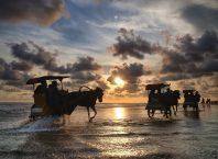 Naik Delman Di Pantai Parangtritis, Image By IG : @joeluluk