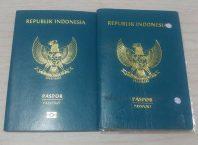 Cara Mengurus Paspor Hilang di Indonesia