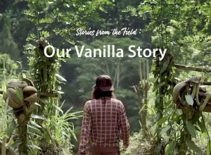 Our-Vanilla-Story