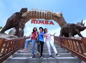 The Rimba, image by : jtp.id