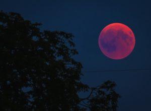 Gerhana Bulan Total, Gambar oleh Thomas B. dari Pixabay